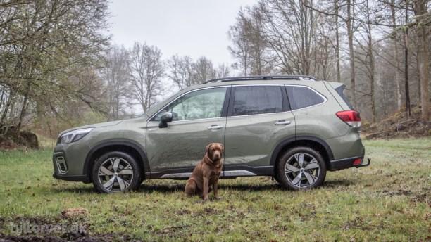 Subaru dumper priserne – spar over 100.000 kroner